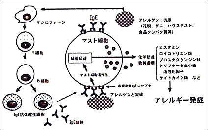 image_96_1